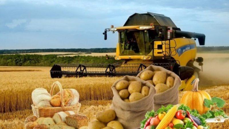 Зависит продовольственная безопасность