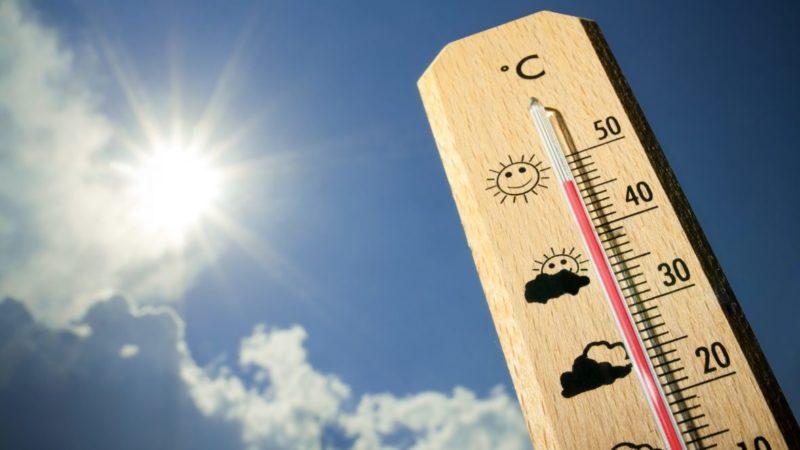 Вновь ожидается максимальная температура воздуха – 40 градусов
