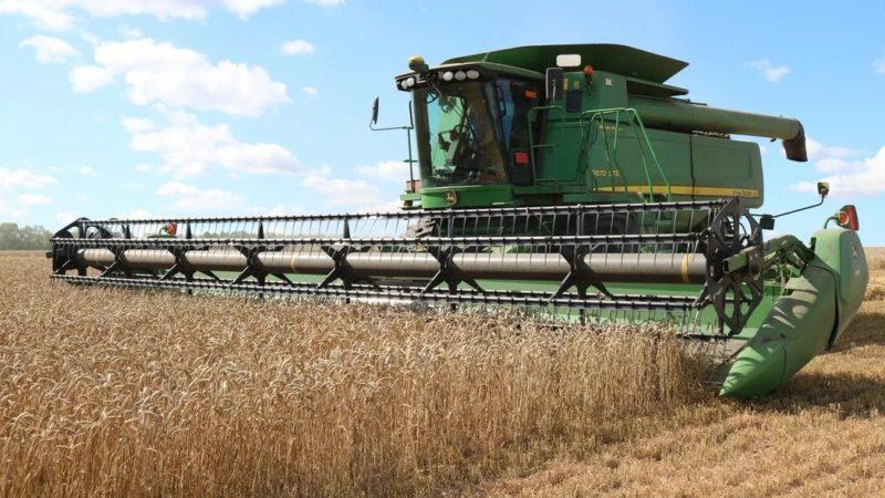 В Оренбуржье десять хозяйств показывают урожайность озимых до 72 ц/га
