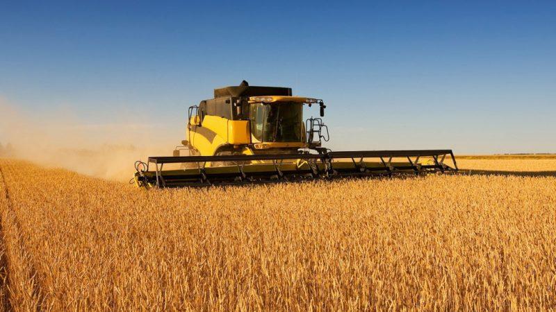 Хозяйства-лидеры по урожайности