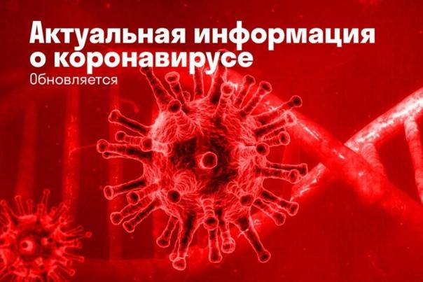 Вирус не отступает