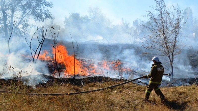 Трём районам Оренбуржья угрожают природные пожары