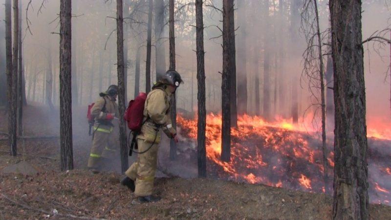 Пожар ликвидирован