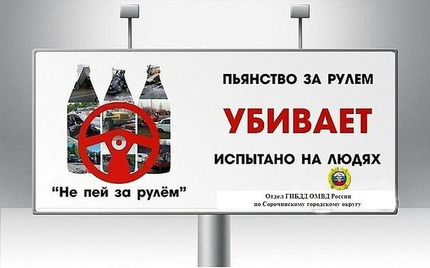 О проведении профилактических мероприятий на территории Сорочинского городского округа