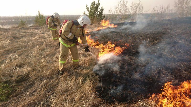 Полыхают степные пожары