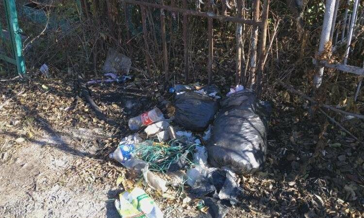 В Сорочинске на местных кладбищах нарушено санитарное законодательство
