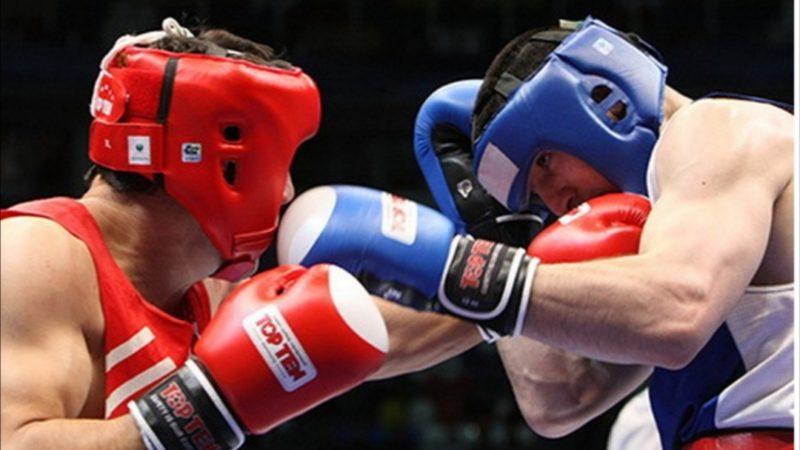Боксёры соревнуются