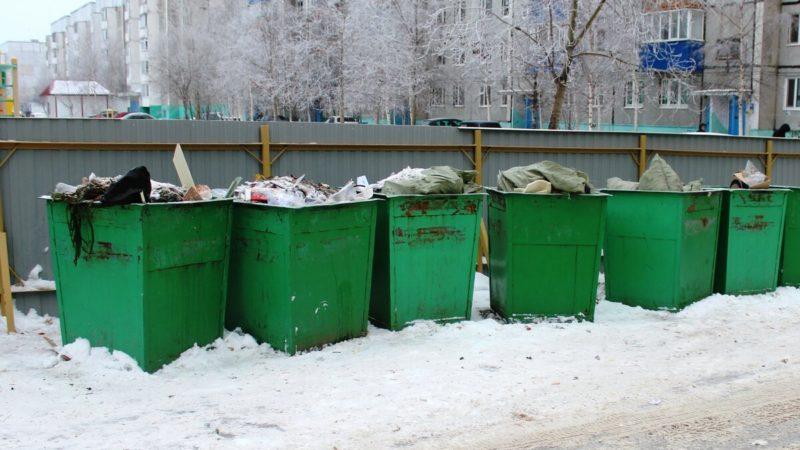 Министерство РФ контролирует вывоз мусора