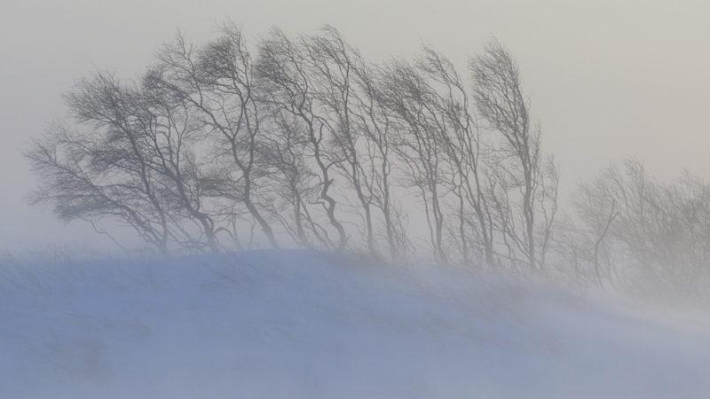 В Оренбуржье ожидается снег и метель
