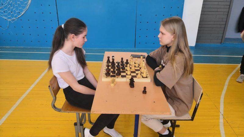 Шахматные бои и их победители