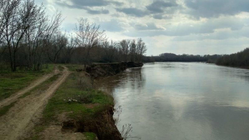 В Сорочинском городском округе на берегу реки Уран обнаружен скелет человека