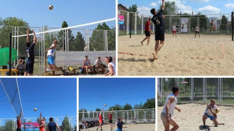 Волейбольная пляжная битва состоялась в парке