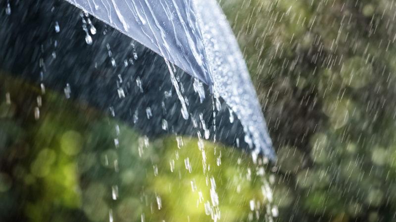 Градус поднимется, дожди будут кратковременны