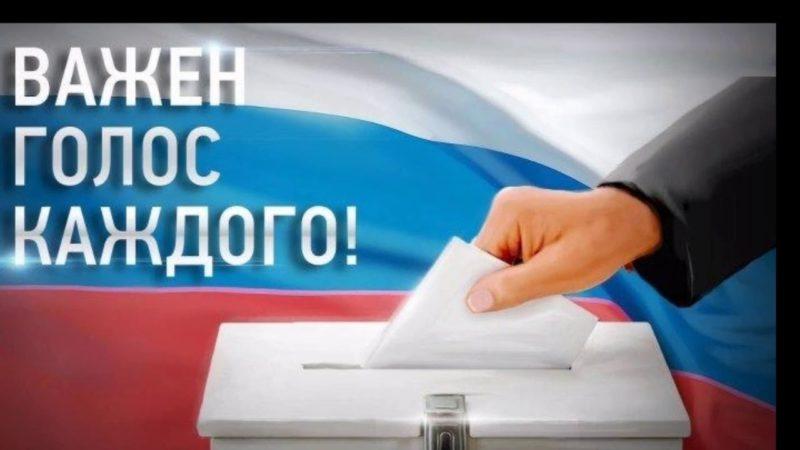 Выборы идут полным ходом