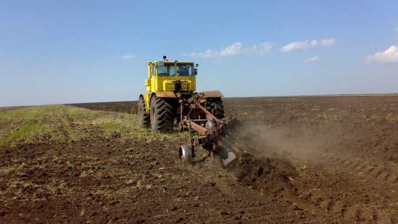 Осенние работы на полях